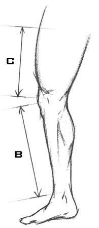 Leg Pad Sizing Chart